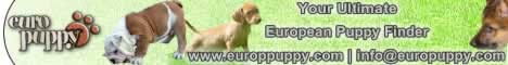 Europuppy! Your Ultimate European Puppy Finder